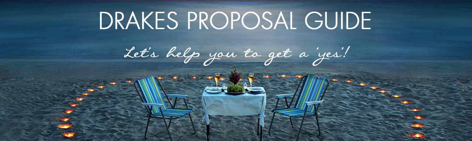 Proposal Tips Drakes Plymouth South West